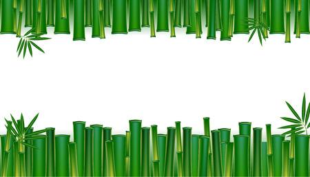Green bamboo tropical panorama backgrounds vectors  illustration. 일러스트