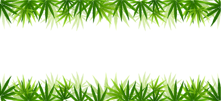 Frame formed with hemp (marijuana) leaves isolated on white background.vector illustration.
