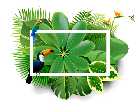 Summer backgrounds of palm leaves with birds. vector illustration. Tropical island spring of beautiful plants green and adstract bachgrounds. Ilustração