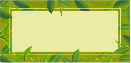 Green tea leaves design for postcard Ilustração