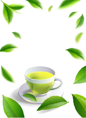 Black tea cup with mint leaves isolated