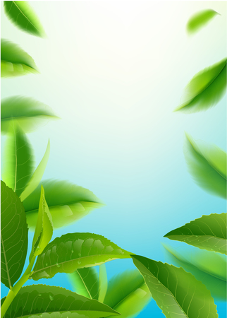 green tea leaves in motion on sky background. Element for design, advertising, packaging of tea products Vector illustration.