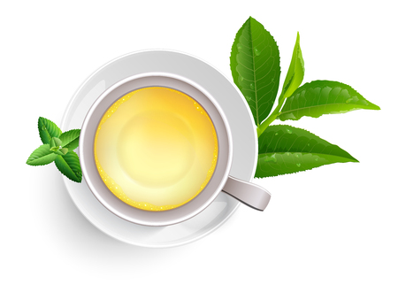 Green tea leaves manu and postcard vector nature background, natural cosmetics and health care products, green tea cup brochure, banner, poster, vector illustration.
