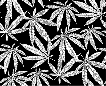 Black and white Cannabis Leaves Seamless Background. Marijuana Pattern. Hemp Growth.