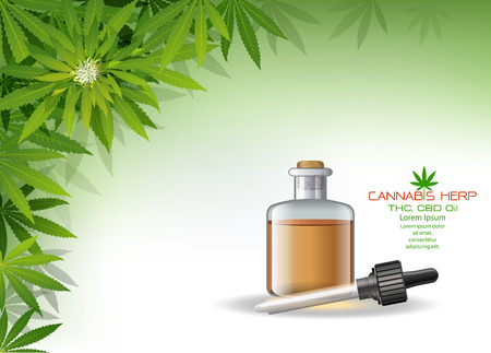 Vector green cannabis oil. CBD Oil bottle. Marijuana leaf label. Graphic Illustrator. Hemp oil in a bottle.