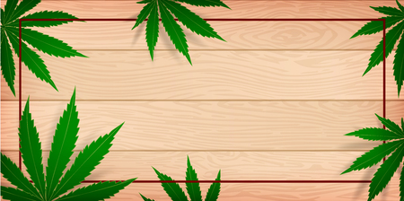 Marijuana concept and cannabis oil and legislation social issue as medical and recreational weed usage on wood background symbols in a 3D illustration style.
