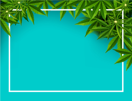 Marijuana concept and cannabis oil and legislation social issue as medical and recreational weed usage on blue background symbols in a 3D illustration style.