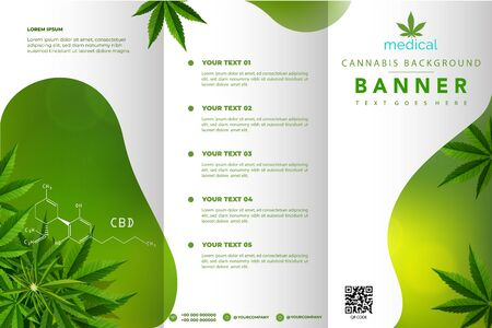 Marijuana leaves or for the production of medical marijuana oil, brochure designs, vector images