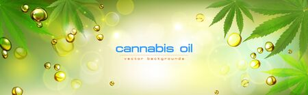 green background. Cannabis marijuana in medical. Concepts of using marijuana for medicinal purposes for, Medical use of non-psychoactive cannabidiol CBD medical.
