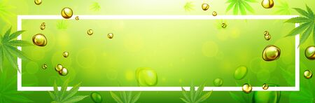 Marijuana leaves or for the production of medical marijuana oil, banner designs, vector images.