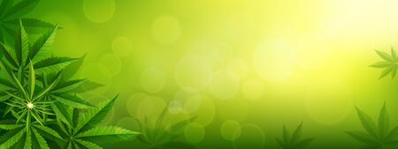 green background. Cannabis marijuana in medical. Concepts of using marihuna for medicinal purposes for, Medical use of non-psychoactive cannabidiol CBD medical.