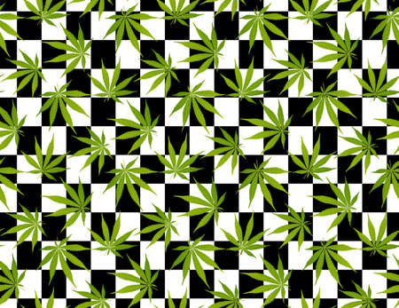 Marijuana leaves seamless vector pattern. Cannabis plant green background. Dense vegetation of Black and white square color background. Illustration