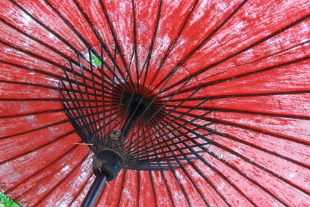 under the red old umbrella photo