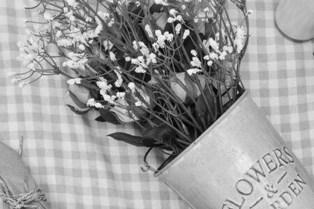 monotone: monotone flower