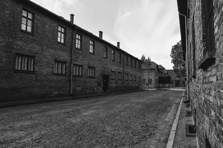 The Building in Auschwitz base camp