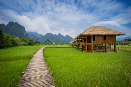 green fields: Rice fields and mountains, Vang Vieng, Laos