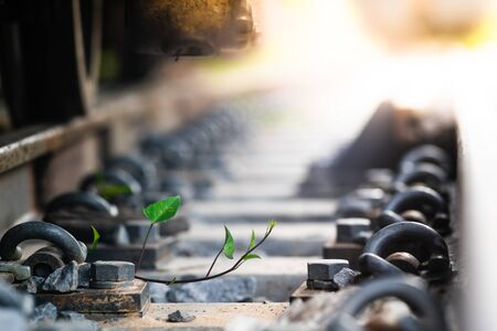 Close up Steel railroad fasteners.Iron nuts fastened to railway tracks.soft focus.Green morning glory in the train tracks 写真素材 - 129958015
