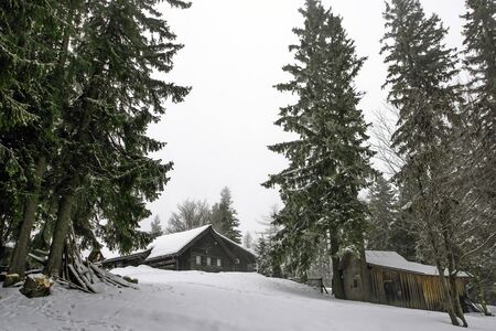 wooden house Among the many snow-covered pine forests Foto de archivo - 129839901