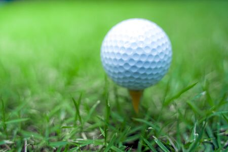 golf ball close-up in soft focus at sunlight with Green grass. wide landscape as background, Sport playground for golf club concept. shallow focus effect.