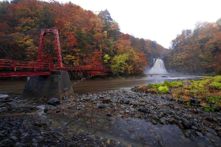 Waterfall among many foliage, In the fall leaves Leaf color change And the red steel suspension bridge In Akita Prefecture, Japan. Onsen atmosphere. At the time of rain Фото со стока
