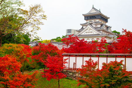 Kokura-jo Castle, Japanese Castle in Katsuyama Public Park, Filled with red leaves In the fall leaves. Onsen atmosphere. in Kitakyushu, Fukuoka Prefecture, Japan.