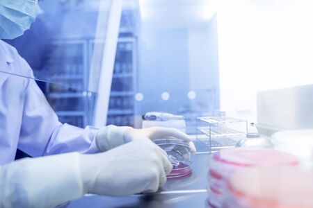 Coronavirus 2019-nCoV Coronavirus Outbreak Respiratory virus , many scientists are researching bacteria in jelly plate,research for vaccine production.