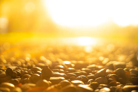 Blurred images of Yellow bokeh images Of the morning sun Shine through the Stone texture photos,stone floor in the garden