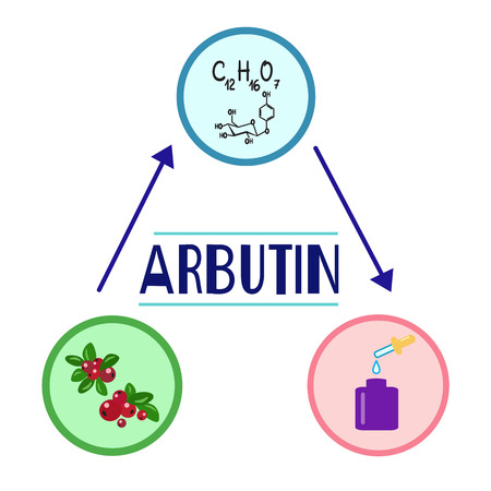 Colored bottle of cream with the arbutin. The berries of bearberry and cowberry. Chemical formula and graphical scheme of arbutin. Print for labels, advertising, price tag, brochure, booklet Illustration