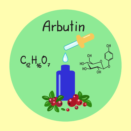 Colored bottle of cream with the arbutin. The berries of bearberry and cowberry. Chemical formula and graphical scheme of arbutin. Print for labels, advertising, price tag, brochure, booklet 向量圖像