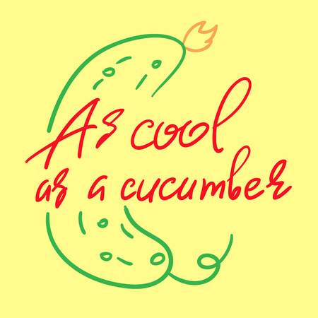 As cool as a cucumber - handwritten funny motivational quote. American slang, urban dictionary, English phraseologism, idiom. Print for inspiring poster, t-shirt, bag, cups, postcard, flyer, sticker. Vettoriali