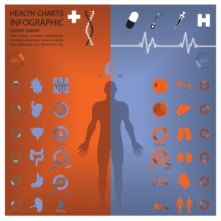 Medical And Health Infographic Infochart Vector