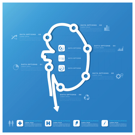 Kidney Shape Business And Medical Infographic Design Template Vector
