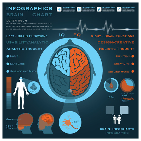 Brain Infographic Infocharts Health And Medical Science Background