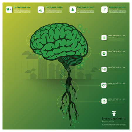 Brain Tree And Root Infographic Science Background Design Template Illustration
