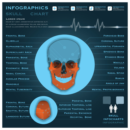 infocharts: Skull Infographic Infocharts Health And Medical Science Background