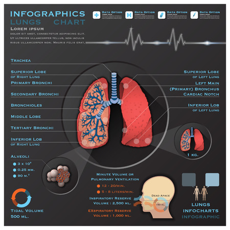 Lungs And Respiratory System Medical Infographic Infochart Design Template 일러스트