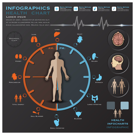 생물학적 시계 보건 의료 인포 그래픽 Infocharts 과학 배경 디자인 템플릿