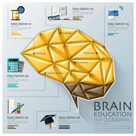 three dimension shape: Brain Shape Three Dimension Polygon Education Infographic Design Template Illustration