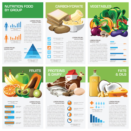 nutrition: Health And Nutrition Food By Group Infographic Chart Diagram Design Template Illustration