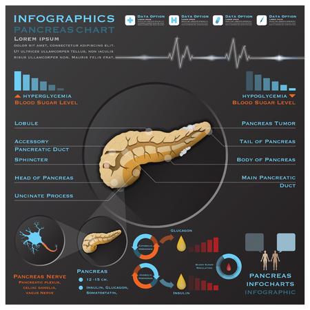 Pancreas Anatomy System Medical Infographic Infochart Design Template
