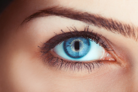 nude sexy girl: Close up photo of womans blue eye in studio
