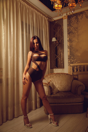 seductress: Vertical portrait of young beautiful brunette woman on high heels in nice lingerie at home Stock Photo