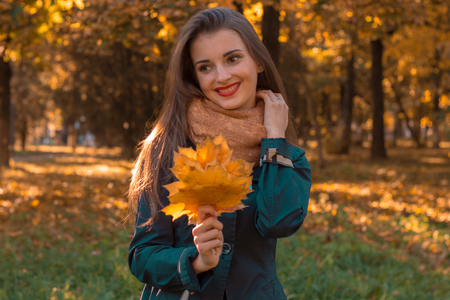 stands: cute young girl stands in autumn Park holding a maple leaf looks away and smiles Stock Photo