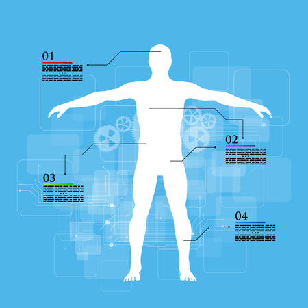 piramide humana: Ilustraci�n del vector de infograf�a medicina. Descripci�n esquem�tica del cuerpo humano.