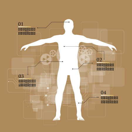 human pyramid: Ilustración del vector de infografía medicina. Descripción esquemática del cuerpo humano.