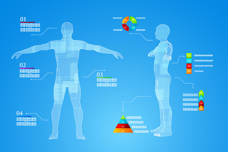human anatomy: Vector illustration of medicine infographics. Schematic description of the human body.