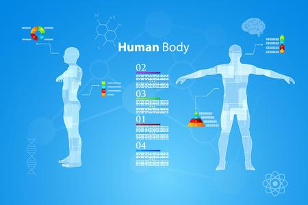 Vector illustratie van de geneeskunde infographics. Schematische beschrijving van het menselijk lichaam.