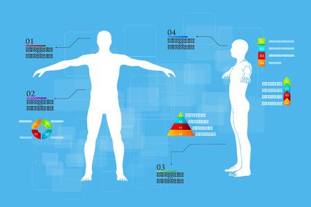 human vein: Vector illustration of medicine infographics. Schematic description of the human body.
