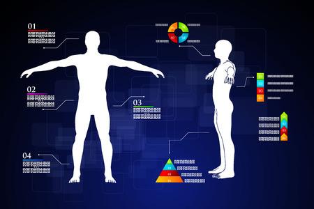 Illustrazione vettoriale di infografica medicina. Descrizione schematica del corpo umano. Archivio Fotografico - 38170749