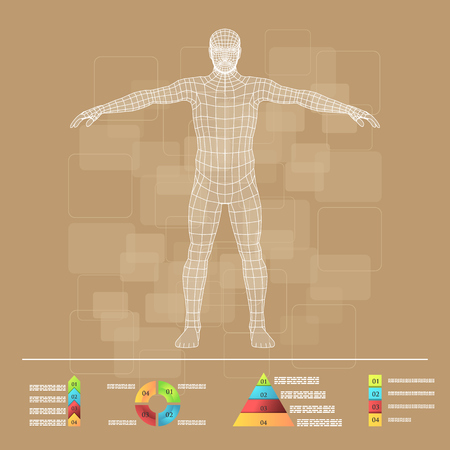 the human body: Vector illustration of medicine infographics. Schematic description of the human body.